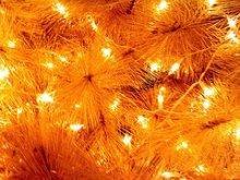 xmas-lights.jpg