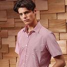 Premier Microcheck (Gingham) Cotton Short Sleeve Shirt